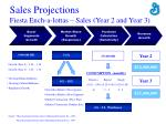 sales projections fiesta ench a lottas sales year 2 and year 3