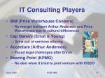 it consulting players