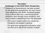 the adult challenges to the grief work perspective