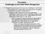 the adult challenges to the grief work perspective2