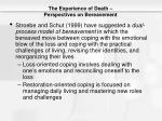 the experience of death perspectives on bereavement4