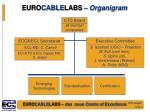 euro cable labs organigram