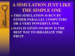 a simulation just like the simple one