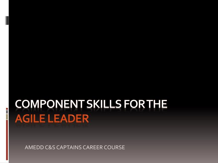 component skills for the agile leader n.