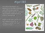 algal ibi
