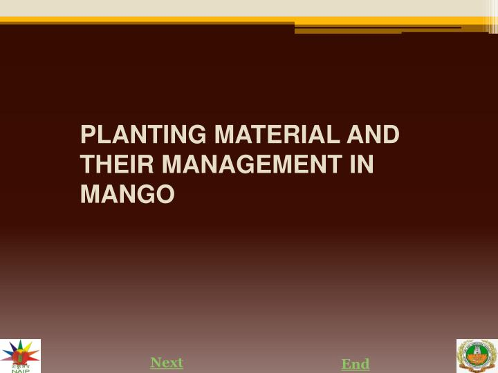 planting material and their management in mango n.