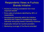 respondents views re fuchsia brands initiative1