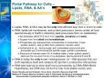 portal pathway for cells lipids rna aa s
