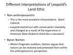 different interpretations of leopold s land ethic