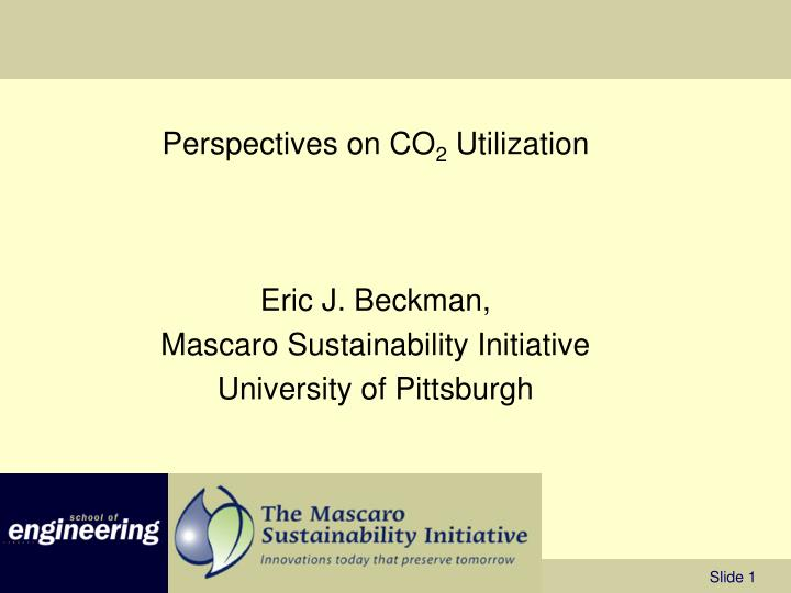perspectives on co 2 utilization n.