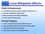 local mitigation efforts