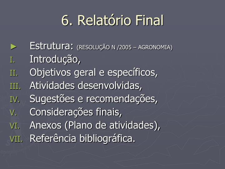 6. Relatório Final