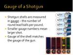 gauge of a shotgun