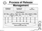 process of release management