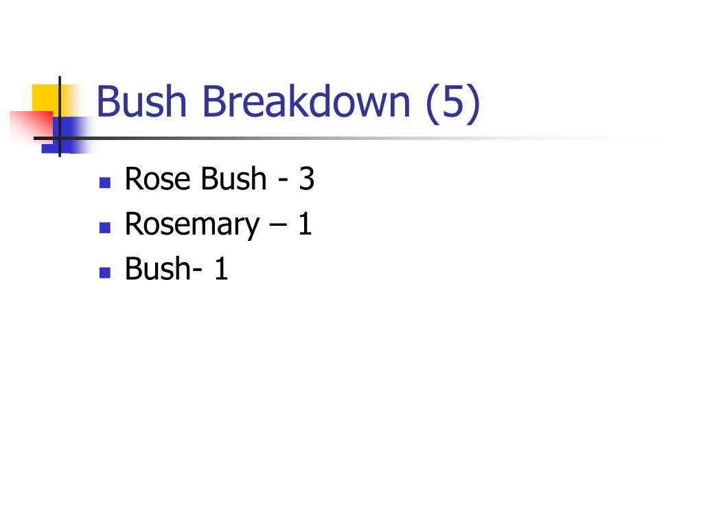 Bush Breakdown (5)