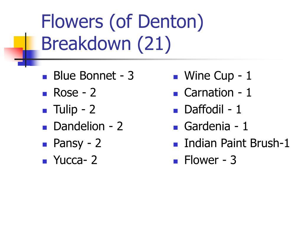 Blue Bonnet - 3