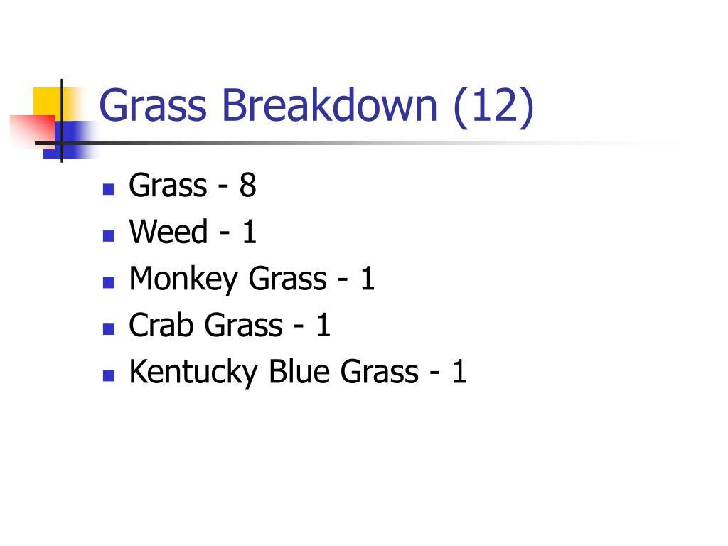 Grass Breakdown (12)