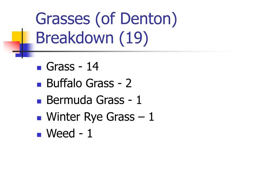 Grasses (of Denton)
