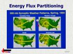 energy flux partitioning