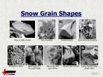 snow grain shapes