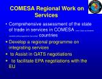 comesa regional work on services