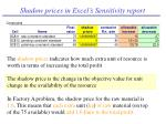 shadow prices in excel s sensitivity report