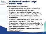 guidelines example large format retail