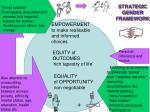 strategic gender framework