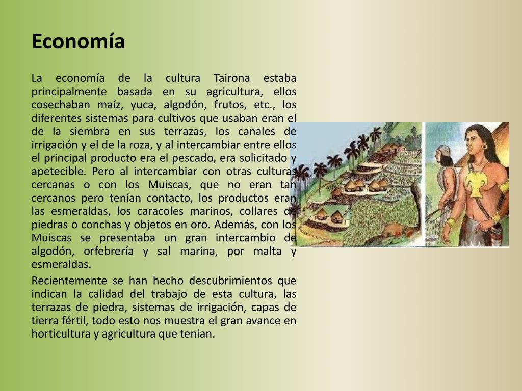 Ppt Cultura Tairona Powerpoint Presentation Free Download
