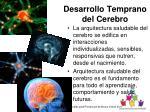 desarrollo temprano del cerebro