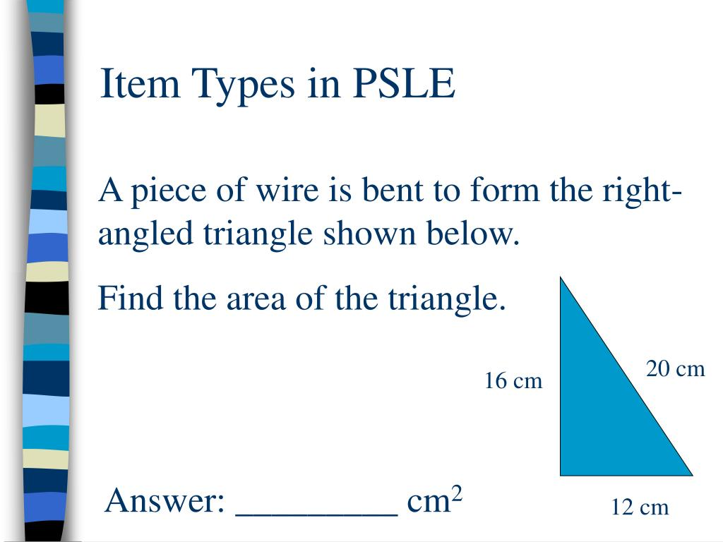 Item Types in PSLE