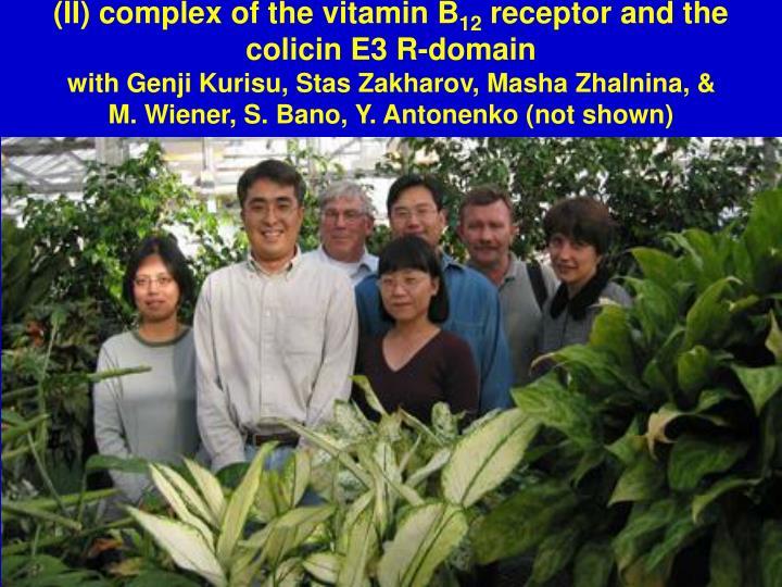 (II) complex of the vitamin B