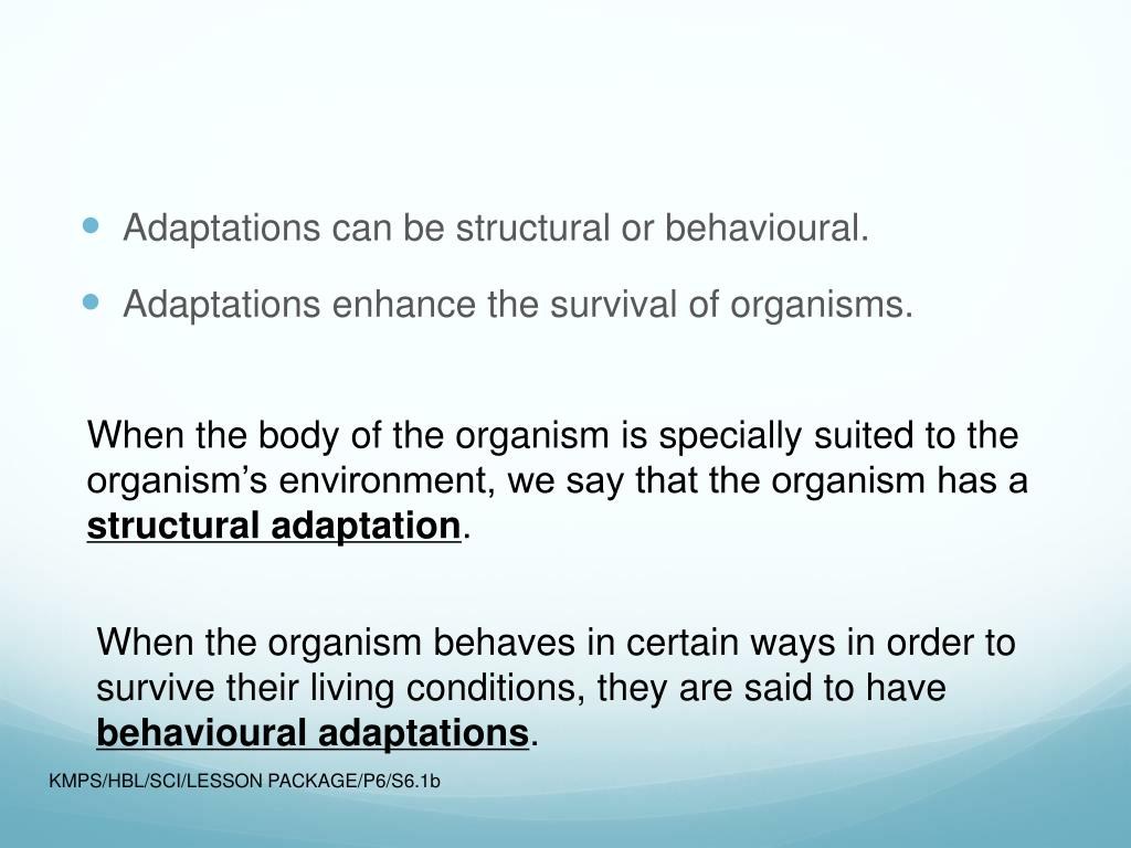 Adaptations can be structural or behavioural.