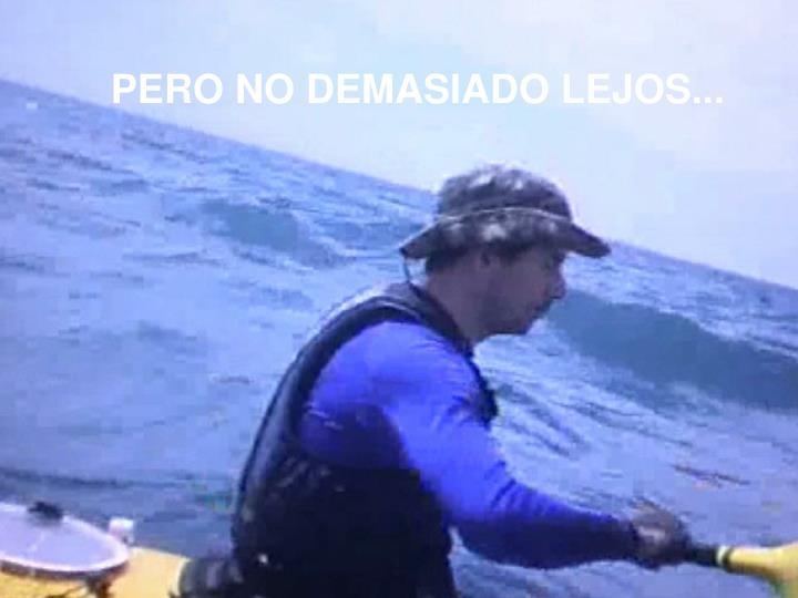 PERO NO DEMASIADO LEJOS...