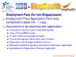 employment pass for non singaporeans