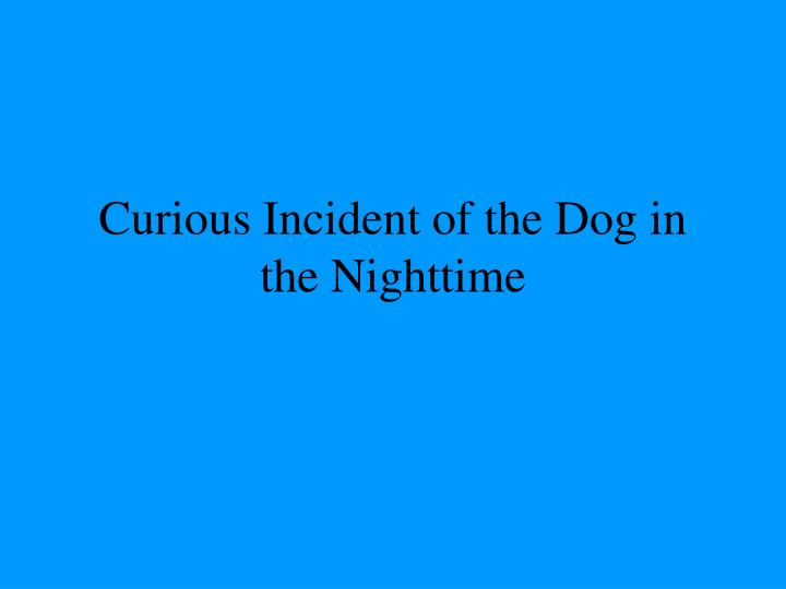 curious incident of the dog in the nighttime n.
