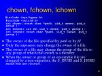 chown fchown lchown