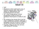motif iii