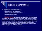 birds mammals14