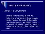 birds mammals60