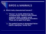birds mammals61