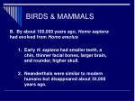 birds mammals66