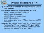 project milestones fy11