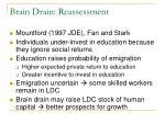 brain drain reassessment