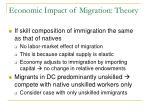 economic impact of migration theory1
