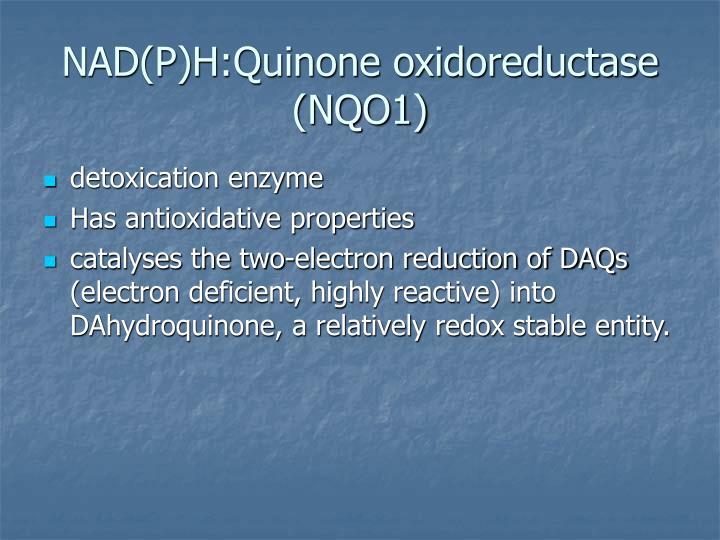 NAD(P)H:Quinone oxidoreductase (NQO1)