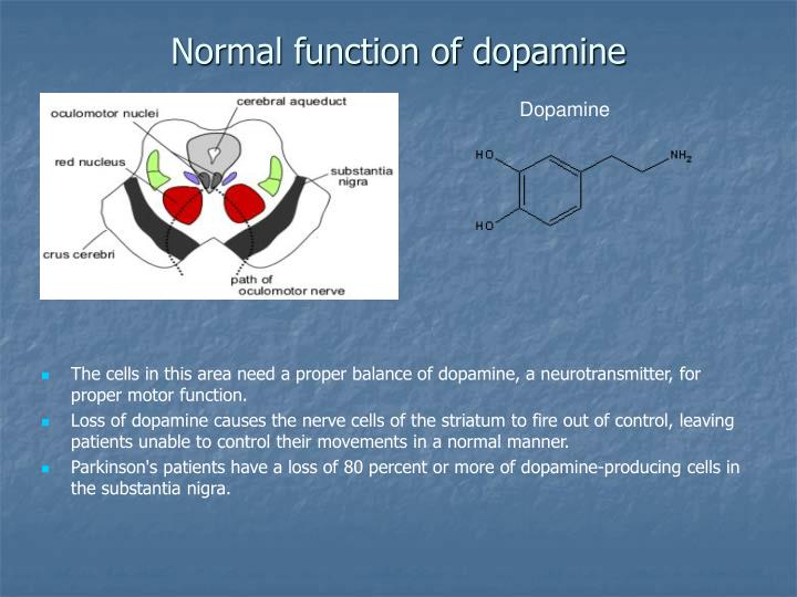 Normal function of dopamine