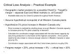 critical loss analysis practical example