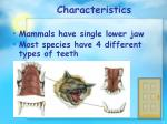 characteristics9