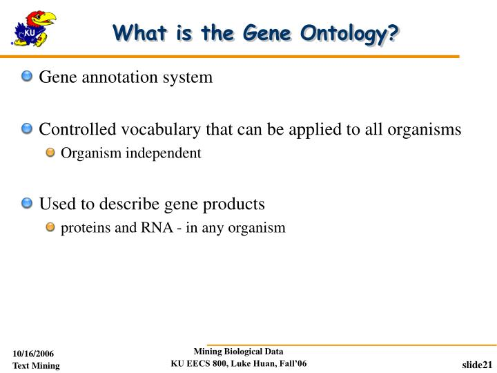 What is the Gene Ontology?